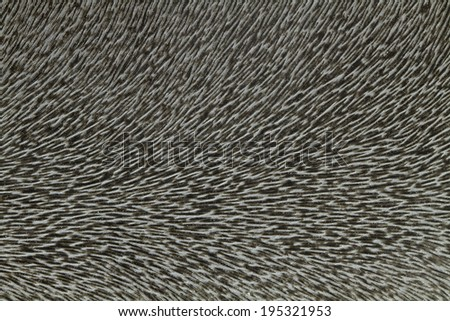 Abstract Modern Background Stock Illustration 437397829
