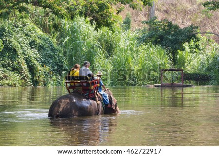 Lampang Thailand  April 15, 2016 : Thailand Elephant Conservation Centre  -  Activities Elephant Bath   Elephant Bath  Naturally, like an elephant bath for cooling