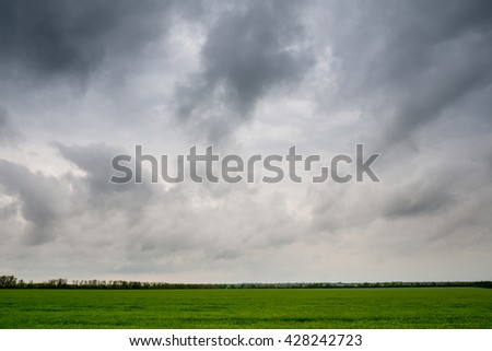 landscape. Field before the rain