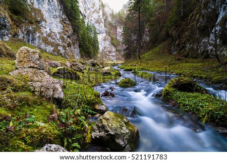 Landscape from Valea lui Stan gorge in Romania