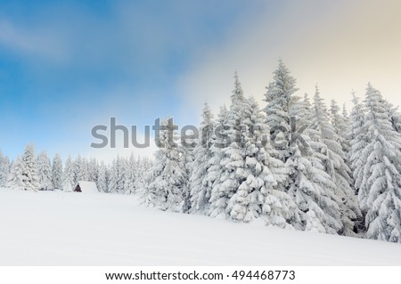 Landscape of beautiful winter in Polish Beskidy Mountains.