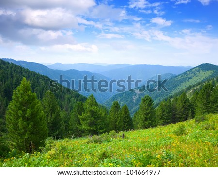 Landscape with forest mountains. Altai, Siberia