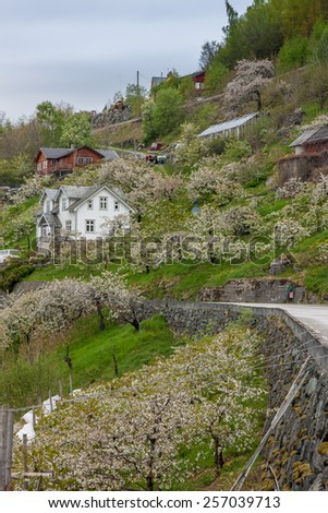 Landscape with mountains in Norwegian village. spring in Norwegian fjords