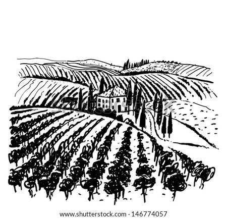 Landscape with vineyard and mountains. Reminiscent of images on wine labels.