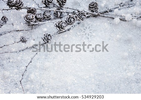 Larch branches with cones on the snow. Christmas background with space for your text.