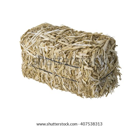 Large bale of bundled yellow hay - path included