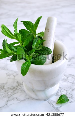 Large bundle of mint in mortar on a marble background, mint sauce