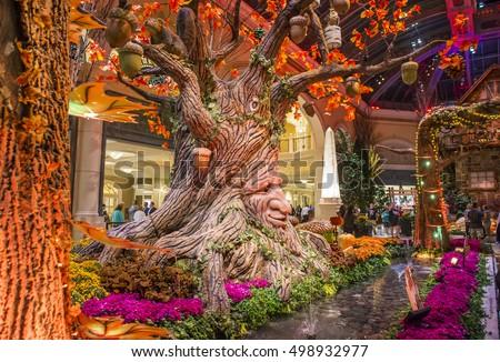 Las Vegas Oct 05 Fall Season Stock