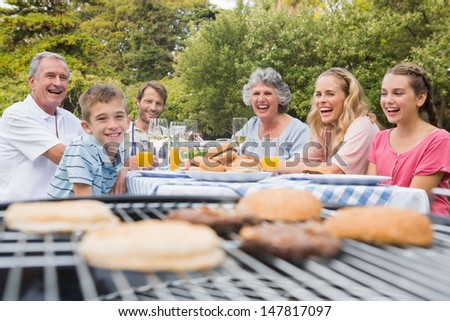 Laughing family having a barbecue in the park together looking at camera