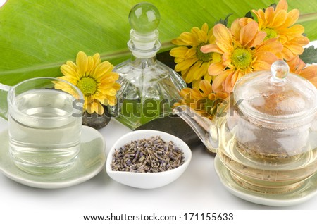 Lavender Flower Tea (Lavandula angustifolia ( United Kingdom )