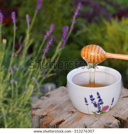 Lavender honey dripping from a wooden spoon in a bowl in the garden. Lavender plants on the background.