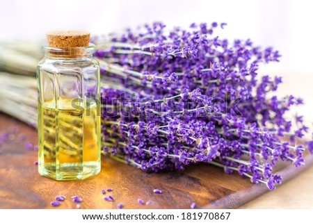 Lavender oil for spa on a wooden desk with lavender flowers