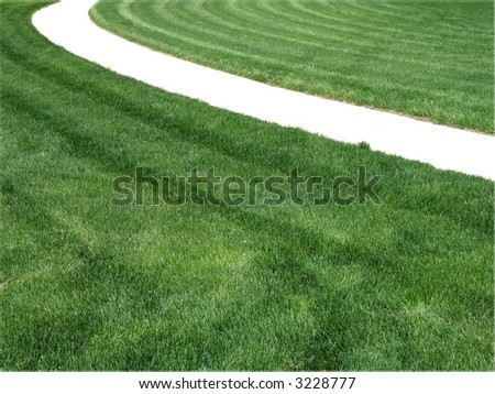 lawn after mowing