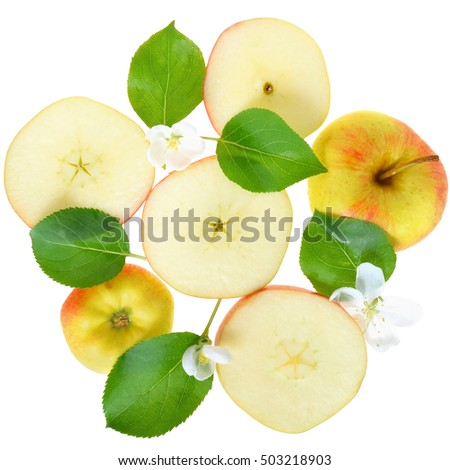 Leaves, flowers and apple slices isolated on white background top view.