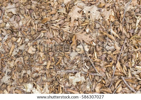 mulch closeupbackground stock photo 616283942 - shutterstock