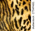 leopard leather texture - stock