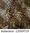 Leopard skin seamless background - stock photo