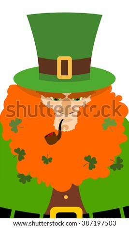 Leprechaun in Green Hat. Portrait serious elf with big Red Beard. Angry old man with smoking pipe. Illustration for St. Patricks day celebration in Ireland