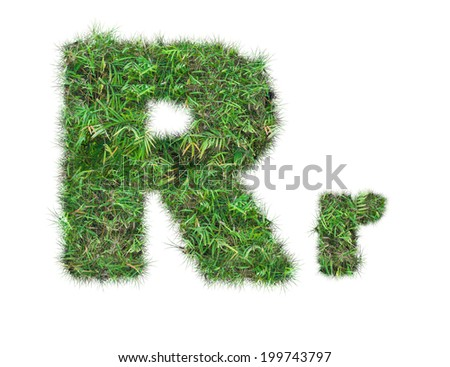 letter R on green grass isolated on over white background