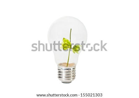 Light Bulb with green branch inside