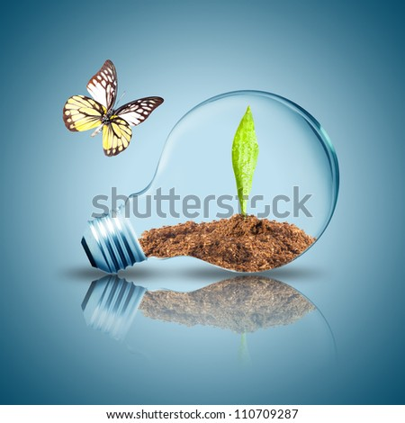 Light Bulb with green leaf and soil inside on floor. Butterfly flying to the light bulb
