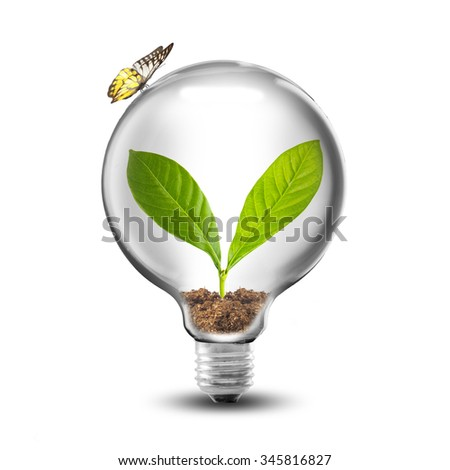 Light bulb dirt green plant sprout stock photo 137538716 for Soil and green