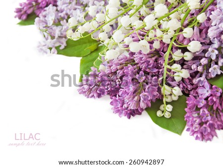 Lilac and lily of the valley flowers bunch isolated on white background