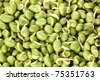 lima bean - stock photo