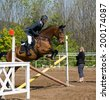 Limber up on the hurdle before showjumping - stock photo