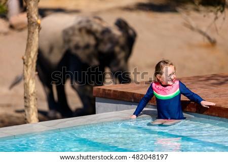Adorable Little Girl South Africa Safari Stock Photo 482050249 Shutterstock