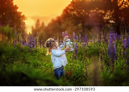 Little girl with blue flowers on the sunset to the field. Artistic intent ,added noise.