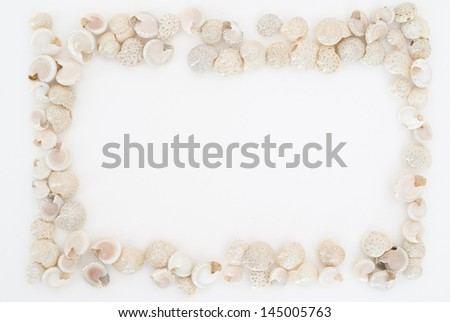 little shells