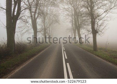 local / country road on a foggy autumn day