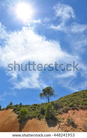 Lone tree on the rocks against the blue sky and sun. Catalonia, Spain