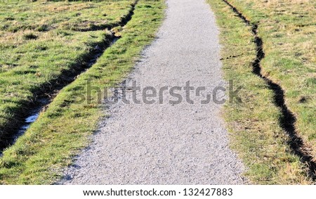 Long gravel way in the forest in spring