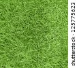 Long green grass texture - stock photo