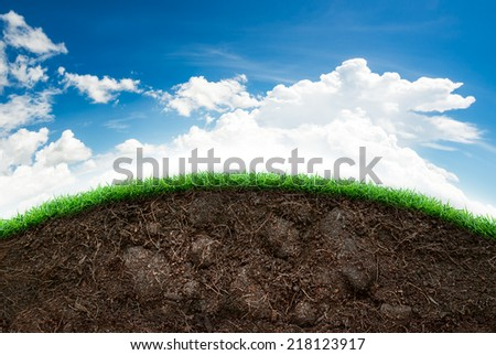Green grass lawn section dirt stock photo 370942766 for Soil and green