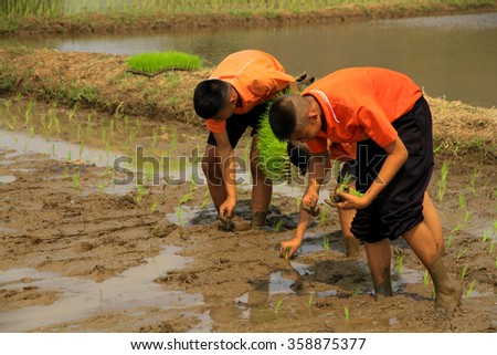 LOPBURI, THAILAND - FEBBRUARY 27, 2014 : Unidentified Thai students 