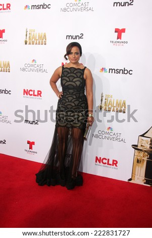 LOS ANGELES - OCT 10:  Judy Reyes at the 2014 NCLR ALMA Awards Arrivals at Civic Auditorium on October 10, 2014 in Pasadena, CA