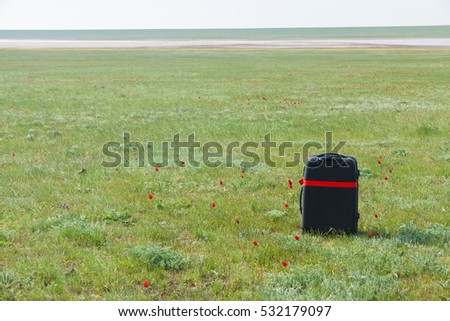 Lost luggage in wild tulips field, Kalmykia, Russia