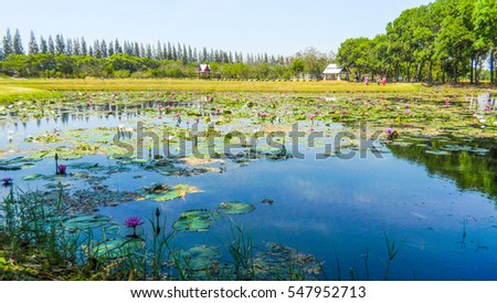 thailand sakon nakhon province phan national park