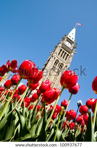 Low view of the Parliament Centre Block Peace Tower at an angle at lunchtime in spring with red tulips.