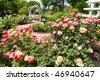 Luther Burbank Gardens - stock photo