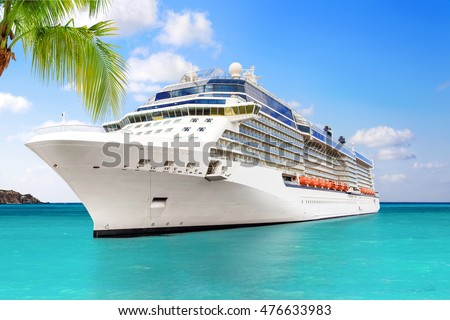 Luxury Cruise Ship Sailing to Port