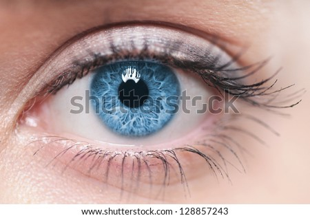 Macro image of human eye