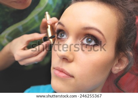 making makeup to the bride, her face closeup