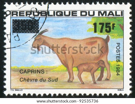 MALI CIRCA 1984: stamp printed by Mali, shows Southern goats, circa 1984