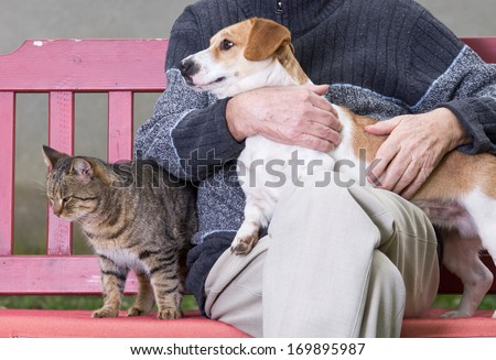 Cuddling Stock Photos Images Amp Pictures Shutterstock