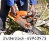 Man cutting tree with chain saw in sunshine - stock photo