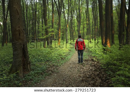 Man hiking the trail in the forest